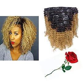 Kinkys Clip In Hair Extensions 4A 4B Afro Kinky Curly Clip In Virgin Natural Hair Clip In Extensions Ombre Brown Blonde Clip In Hair Extensions For Black Women Full Head Kinky Clip In # 1b/27 10Inch