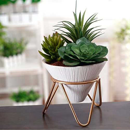 Brass Plant Stand (Modern Design White Ceramic Cone Shape Succulent Planter Pot with Brass Base Stand)