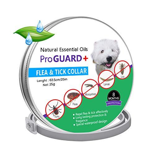 APPHOME Flea Tick Collar, Dog Cat Anti Lice Flea Mite Tick A