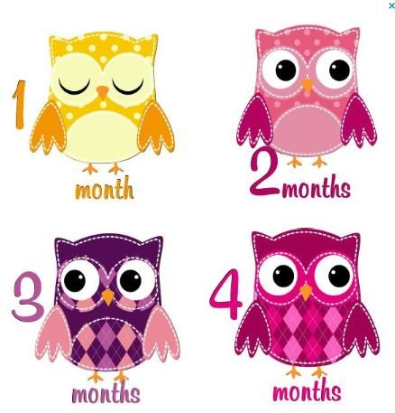 Monthly Stickers Baby Month Stickers Baby Girl Monthly Stickers Girl Baby Monthly Stickers Girl Patchwork Owls Monthly Stickers Argyle Plaid Dots -