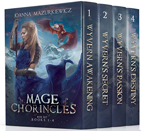 Box Chronicles (The Mage Chronicles Box Set (Books 1-4))