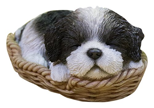 Hi-Line Gift Ltd Pet Pals-Wicker Basket-Shih Tzu, Black/White