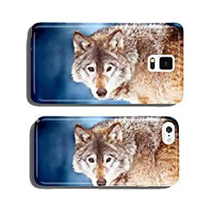 Closeup portrait of a wild wolf cell phone cover case iPhone5