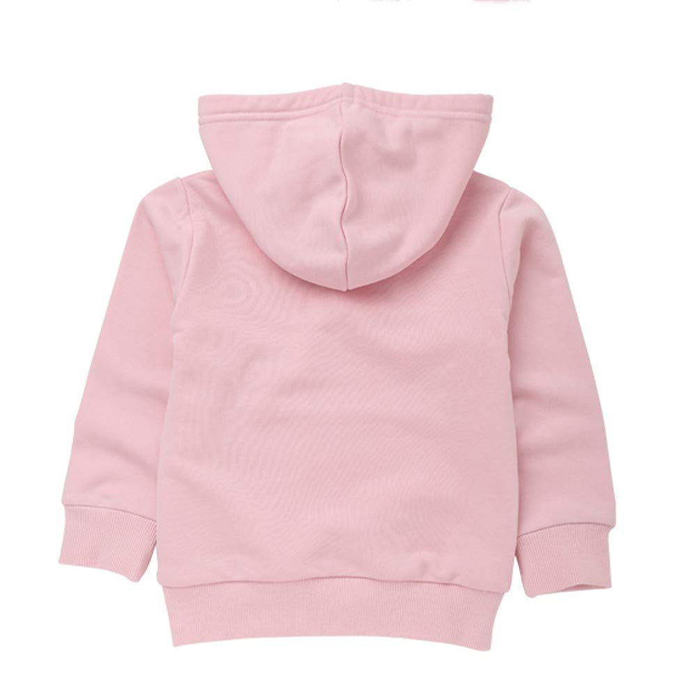 Oldeagle Baby Sweatshirt 1-6 Years Old Toddler Boys Girls Pullover Hooded Casual Blouse Sweatshirt Tops Outfits