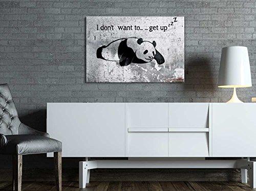 Lazy Panda Painting on Shabby Wall