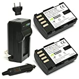 Wasabi Power Battery (2-Pack) and Charger for Panasonic - Best Reviews Guide