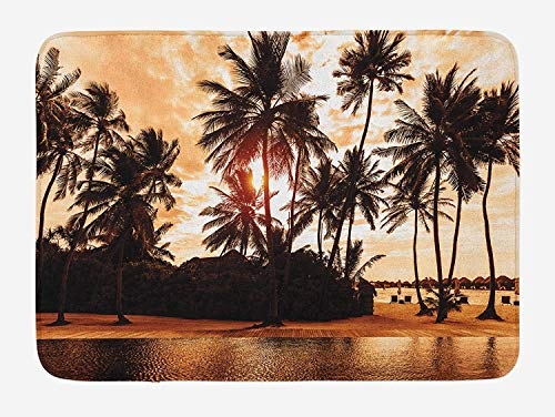 Huayuanhurug Doormats Bath Rugs, Beach Tropic Ocean Sea Love Bora Bora Island Outdoor/Indoor Door Mat for Front Door,Kitchen,Garden, Bathroom Decor Rug 16