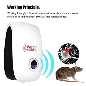 Rat Ant Mosquito Mouse Repellent Ultrasonic,Home Ultrasonic Pest Control Repeller Repellent Plug--6 Packs