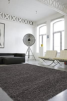 Sweethome Stores COZY2760-2X5 Shaggy Rug