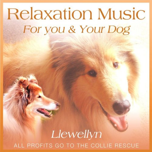 Relaxation Music for You and Y...