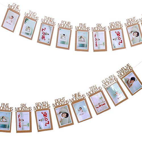 ZOOP 1st Birthday Bunting Garland Banner Baby Growth Record 1-12 Month Photo Prop Party Bunting Decor