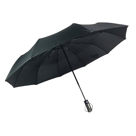 Zhhlaixing 10 Costillas Reforzado Paraguas Automático Windproof Resistente al Agua Y Protector Solar Auto Encendido/