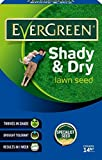 EverGreen Shady and Dry Lawn Grass Seed Carton, 420 g