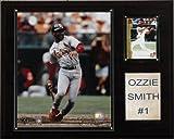 MLB Ozzie Smith St. Louis Cardinals Player Plaque
