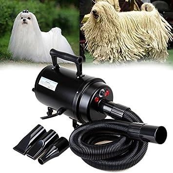 ambienceo portátil 2800 W perro gato secador de pelo soplador calentador Blaster Pet Grooming secador de pelo velocidad temperatura ajustable con 3 pcs ...