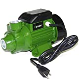 3/4 Hp Centrifugal Electric Water Pump Pool Farm Pond Biodiesel Hoteche 1''