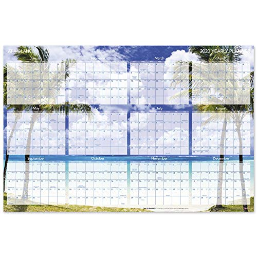 "AT-A-GLANCE 2020 & 2019/20120 Wall Calendar/Wall Planner, 24"" x 36"", Large, Erasable, Dry Erase, Reversible, Horizontal, Tropical Escape (DMWTEE28)"