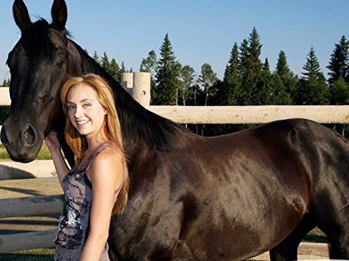 Amber Marshall & Spartan Oil Painting On Canvas Modern Wall Art Pictures For Home Decoration Wooden Framed (20X20 Inch, Framed)