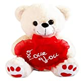 White 12'' Plush Teddy Bear with ''I Love You'' Heart Pillow
