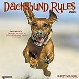 Just Dachshund Rules 2018 Wall Calendar (Dog Breed Calendar)