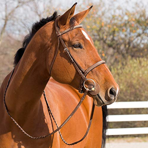 HORZE Harrison Bridle - Pony, ()