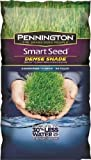 Pennington 100526627 Grass Plants