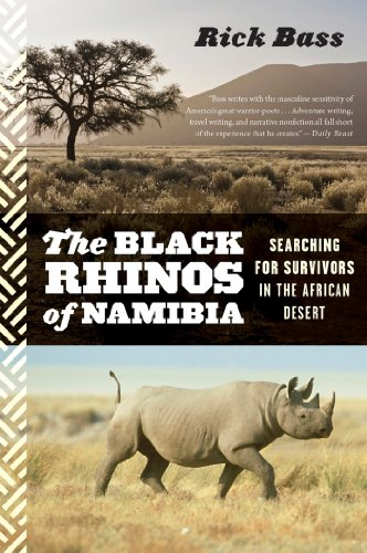 (The Black Rhinos of Namibia: Searching for Survivors in the African Desert)