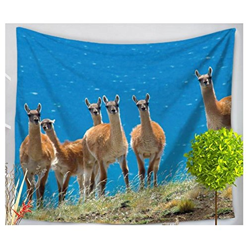 (Betterwish New Tapestry Hippie Tapestry, Indian Dorm Decor, Psychedelic Tapestry Lovely alpaca animal series tapestries beach blanket (L: 210150 cm(83