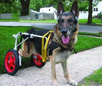 Ajustable para silla de ruedas para perro (L), peso 60to 100 libras, patas traseras rehabilitación, luz peso: Amazon.es: Productos para mascotas