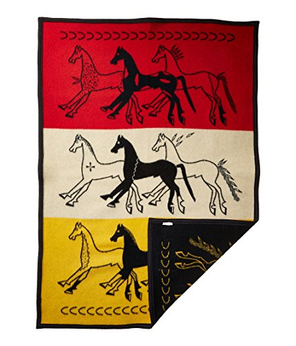 Pendleton Unisex American Indian College Fund Baby Blanket Future of The Plains One Size