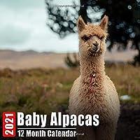 Image for Mini Calendar 2021 Baby Alpacas: Cute Alpaca Babies Photos Monthly Small Calendar With Inspirational Quotes each Month