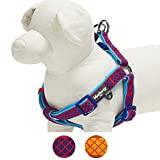 Blueberry Pet 2 Colors Soft & Comfy Step-in Urban Chic Diamond Pattern Padded Dog Harness, Chest Girth 19.5'' - 25.5'', Bold Red, Medium, Adjustable Harnesses for Dogs