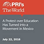 A Protest over Education Has Turned into a Movement in Mexico | Shannon Young