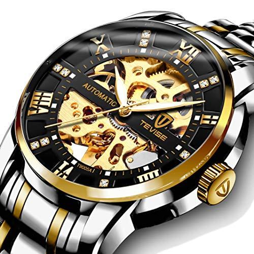 Men's Watch Luxury Mechanical Stainless Steel Skeleton Waterproof Automatic Self-Winding Roman Numerals Diamond Dial Wrist Watch