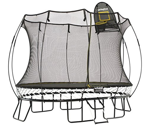 Springfree Trampoline 8x11ft Medium Oval Trampoline With Basketball Hoop and Ladder