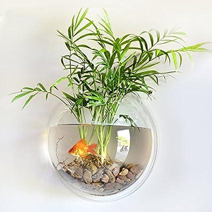 Zantec Pecera Moda creativa de acrílico montado en la pared Fish ...
