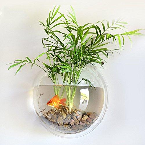 Amyove Pecera Moda Creativa de acrílico montado en la Pared Fish Tank Bowl florero Acuario Planta Olla decoración para el...