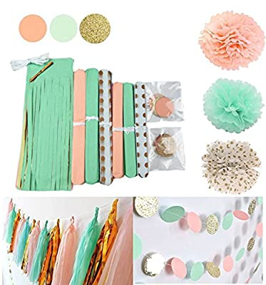 Qian's Party 20 pcs Mint Peach Glitter Gold Tissue Paper Pom Pom Gold Tissue Pom Pom Paper Tassel Polka Dot Paper Garland for Baby Shower Decoration Wedding Nursery Decorations Bridal Shower from Qian's Party