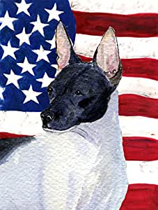 Caroline's Treasures SS4054CHF USA American Flag with Rat Terrier Flag Canvas, Large, Multicolor