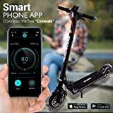 Folding Electric Scooter for Adults - 300W