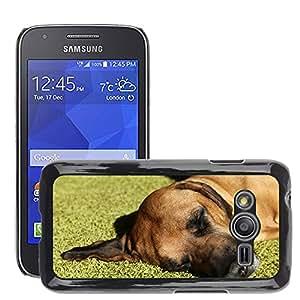 Cas Coq Case Cover // M00146464 Perro de mascota Preocupaciones Resto // Samsung Galaxy Ace4 / Galaxy Ace 4 LTE / SM-G313F