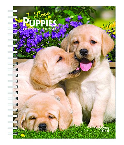 I Love Puppies 2019 6 x 7.75 Inch Weekly Engagement Calendar, Animals Dog Breeds Puppies (Multilingual Edition)