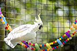 Bird Ladder Parrot Toys, Rough Surface Perch
