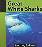 Great White Sharks, Barbara Balfour, 1590363973