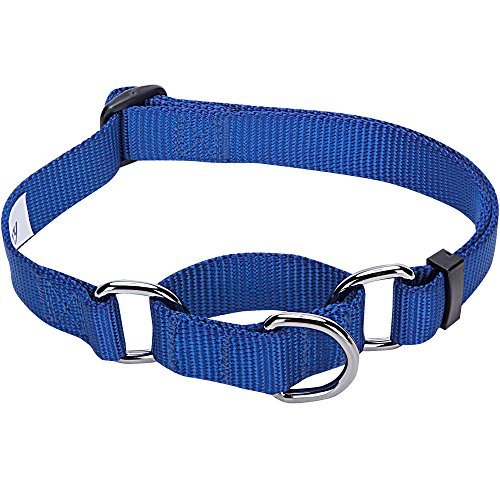 Blueberry Pet 19 Colors Safety Training Martingale Dog Collar, Royal Blue, X-Small, Heavy Duty Nylon Adjustable Collars for Dogs