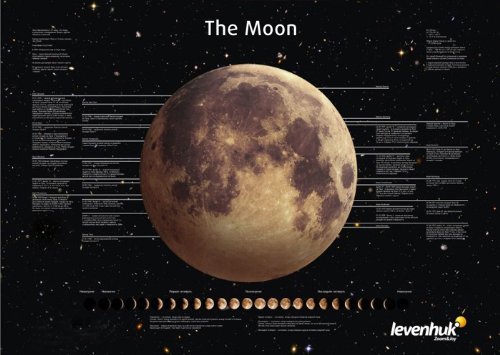 Levenhuk Space Posters Set (3 posters: Moon, Solar System, Sun and Other Stars)