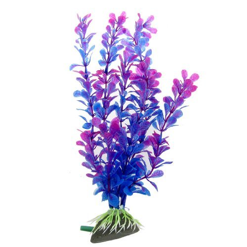 eDealMax Jardin décoratif Air Pierre Plante aquatique, 10,8 pouces, Fuchsia/Bleu