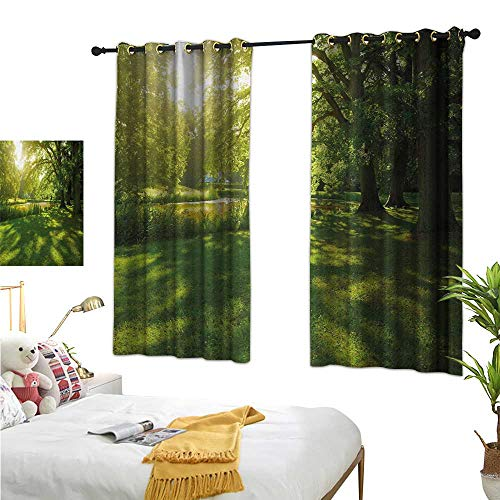 """Used, Luckyee Thermal Insulating Blackout Curtain,Green,55"""" for sale  Delivered anywhere in USA"""
