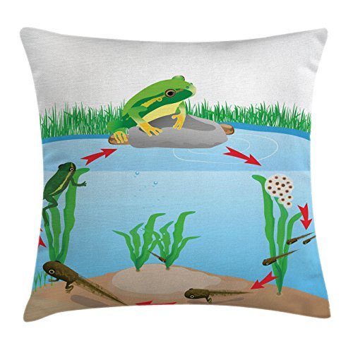 Ambesonne Animal Throw Pillow Cushion Cover, Life Cycle of Tropic Tree Frog Presents with Aquatic Elements Evolution in Nature, Decorative Square Accent Pillow Case, 16 X 16 Inches, Multicolor