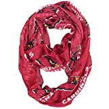 NFL Arizona Cardinals  Sheer Infinity Scarf